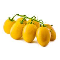 "Pomodoro ""Datterino giallo"""