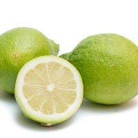 Lemons Verdello sicily