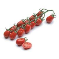 """Tomato """"red datterino"""" Bio"""