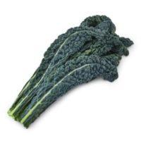 Tuscan black Cabbage Bio
